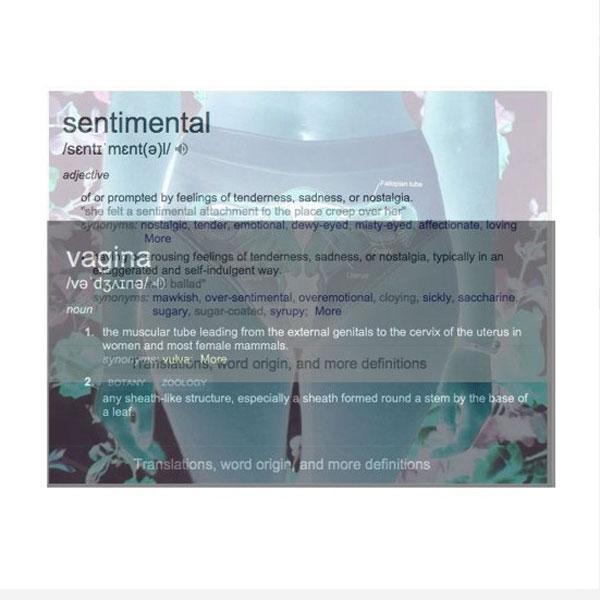 Sentimental Vagina